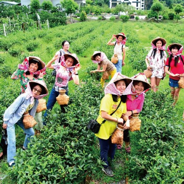 2018勞動教育【No.1】107年06月13日(三) ◆ 宜蘭茶柚風情、中山樂活之旅 活動照片